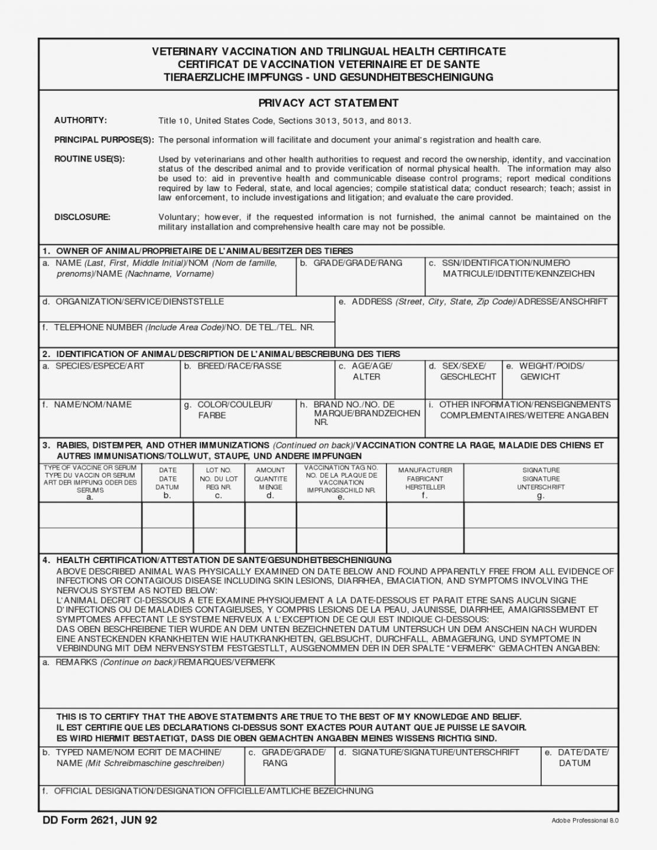 010 Editable Veterinary Health Certificate Template Throughout Veterinary Health Certificate Template