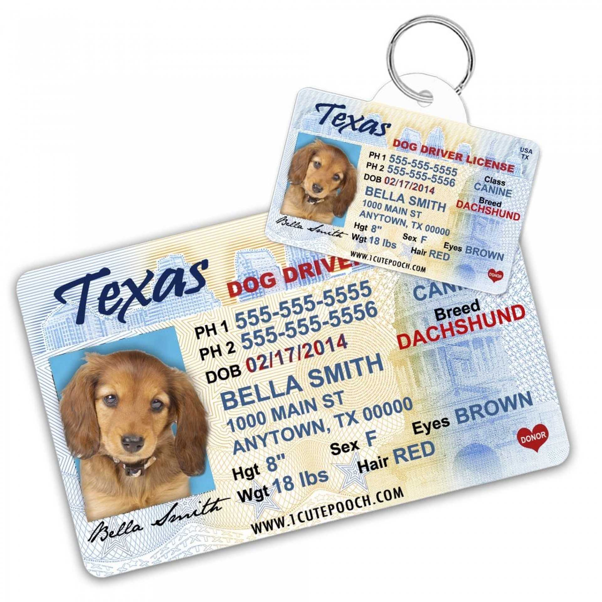 043 Printable Service Dog Id Card Template Staggering Ideas Pertaining To Texas Id Card Template