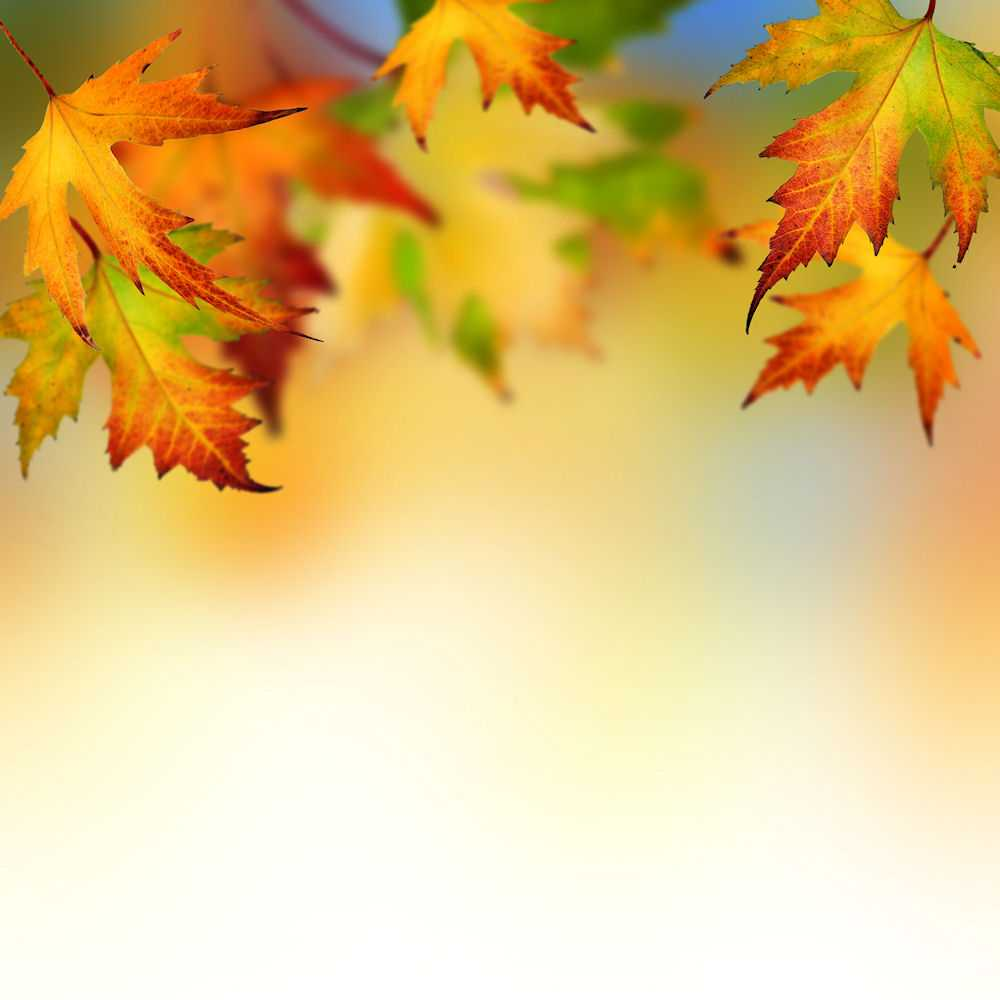 Autumn Ppt Background – Colona.rsd7 Intended For Free Fall Powerpoint Templates