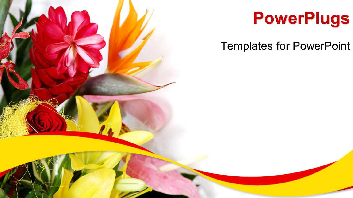 Greeting Template. Greeting Cards Word Templates Publisher Throughout Greeting Card Template Powerpoint