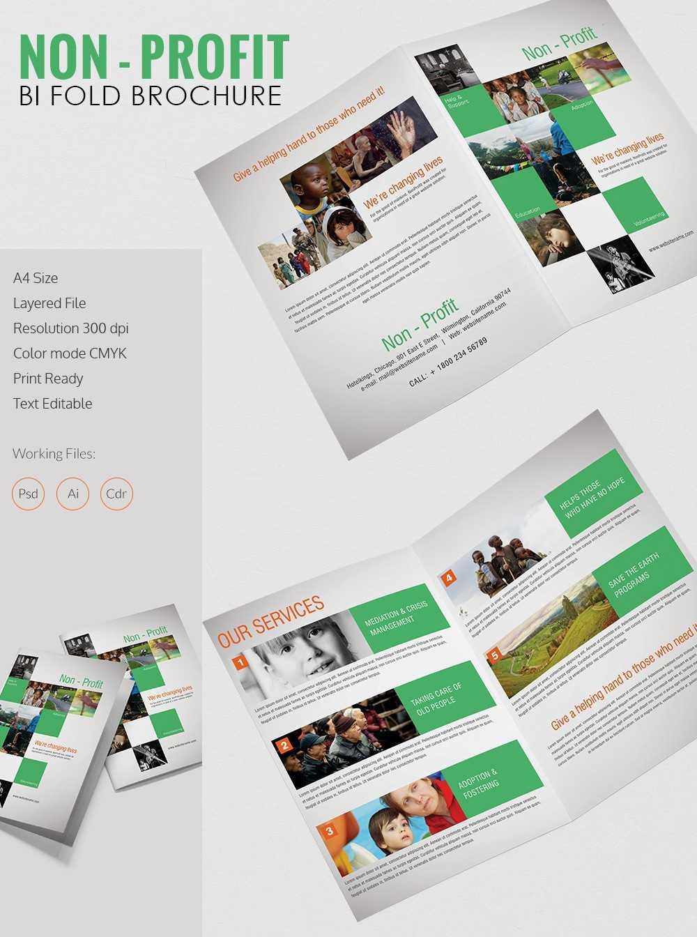Non Profit Brochure Template Zrom Tk Ngo Templates Within Ngo Brochure Templates